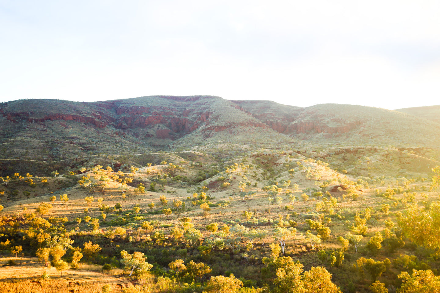 Munjina gorge at sunrise, pilbara