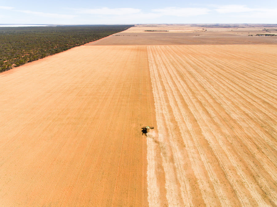 Drone photo of harvest