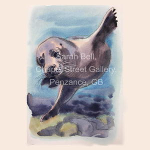 Sarah Bell Watercolour Seal Collection Cards
