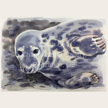 Load image into Gallery viewer, Sarah Bell Watercolour Seal Collection Cards