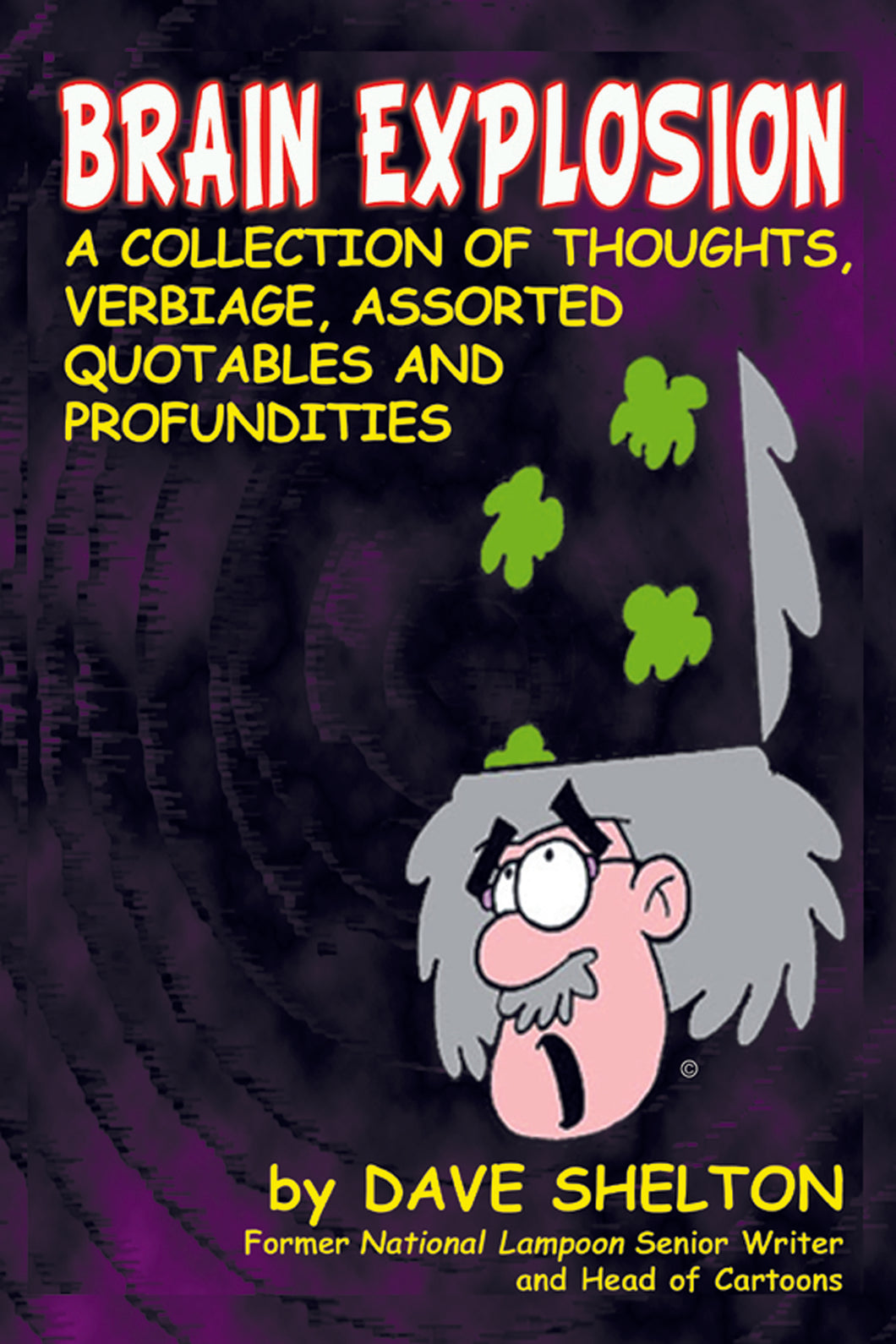 Brain Explosion: A Collection of Thoughts, Verbiage, Assorted Quotables and Profundities (paperback) - BearManor Manor