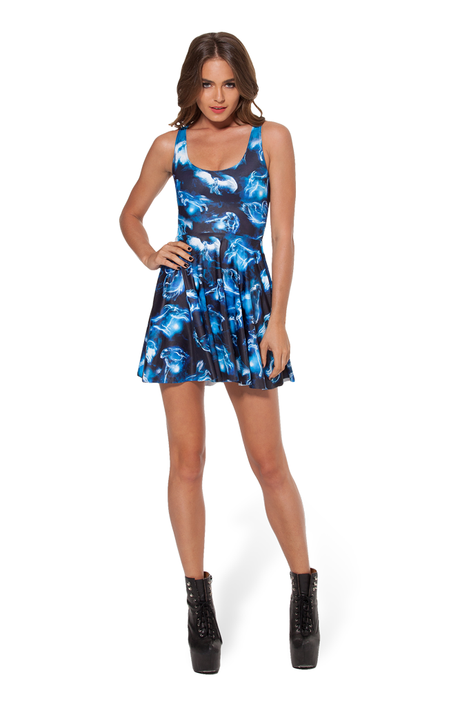 Patronus Reversible Skater Dress