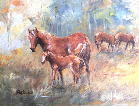 Tuan Forest Brumbies