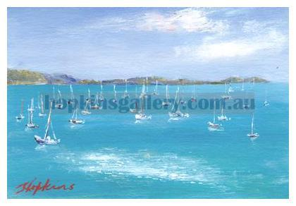 Airlie Beach - Shingley Bay