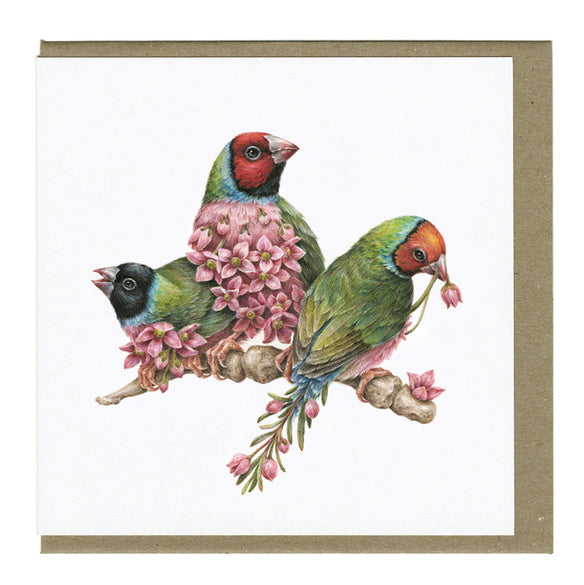 Courtney Brims - Gouldian Finches Card