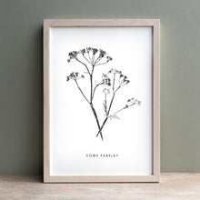 Load image into Gallery viewer, Cows Parsley Print | Black