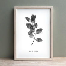 Load image into Gallery viewer, Eucalyptus Sprig | Black