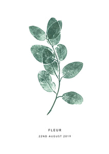 Eucalyptus Sprig Personalised Print | 3 colour options