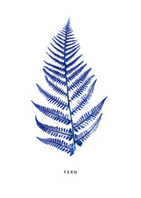 Load image into Gallery viewer, Fern Print | Blue