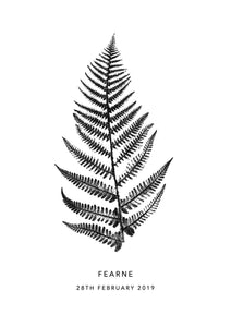 Fern Personalised Print | 3 colour options