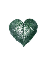 Load image into Gallery viewer, Ivy Heart Leaf Print | Black | Green