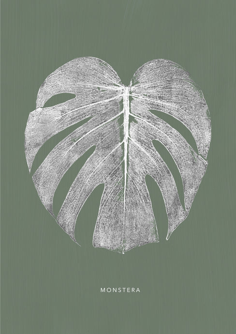 Monstera Leaf Print - White/Green