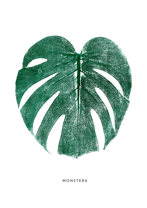 Monstera Leaf Print - Green