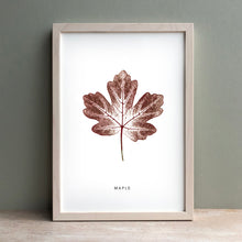 Load image into Gallery viewer, Maple leaf | Autumn