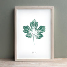 Load image into Gallery viewer, Maple Leaf | Green