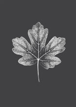 Load image into Gallery viewer, Maple White Leaf Print | Dark Grey