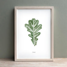 Load image into Gallery viewer, Oak Leaf | Green