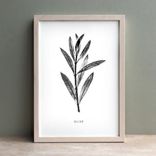 Load image into Gallery viewer, Olive Print | Black
