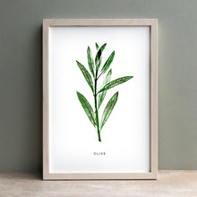 Load image into Gallery viewer, Olive Leaf Print | Black | Green