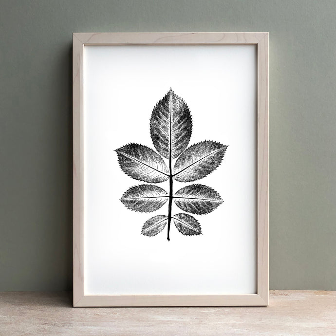 Rose Leaf Print | Black | Green