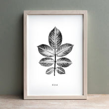 Load image into Gallery viewer, Rose Leaf | Black