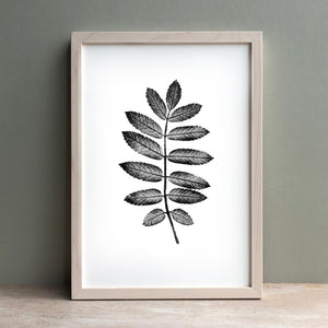 Rowan Leaf Print | Black | Green