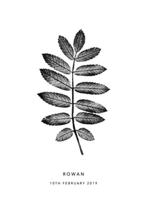 Rowan Leaf Personalised Print | 2 colour options