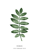 Load image into Gallery viewer, Rowan Leaf Personalised Print | 2 colour options