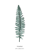 Load image into Gallery viewer, Tall Fern Personalised Print | 2 colour options