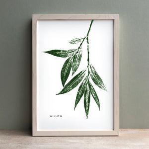 Willow Tree Monoprint | Green