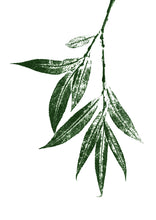 Load image into Gallery viewer, Willow Leaf Print | Black | Green