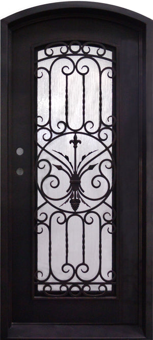 Exterior Wrought Iron Single Entry Door with Double Operable Insulation Glass, Top-rated, HAS027