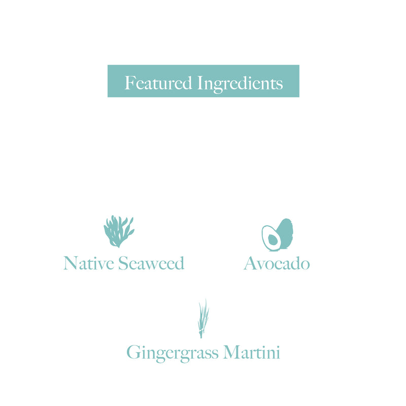 Botany Naturals Hand & Body Wash Native Seaweed, Avocado, Gingergrass Martini Featured Ingredients