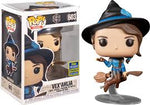 POP! Critical Role Vox Machina - Vex'Ahlia on Broom