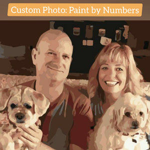 Custom Paint by Number Kit