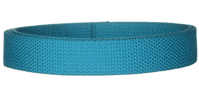 "Synthetic Cotton Canvas Webbing - 1"" Wide - Turquoise"
