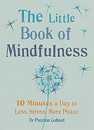 The Little Book Of Mindfulness - Dr Patrizia Collard - I Spy A Simple Life