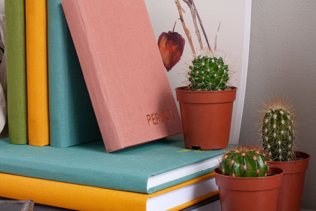 notebooks and cactus plants