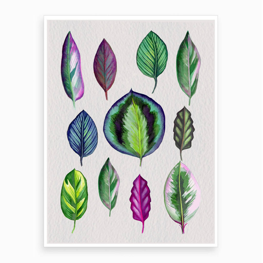 Colourful Leaves Art Print
