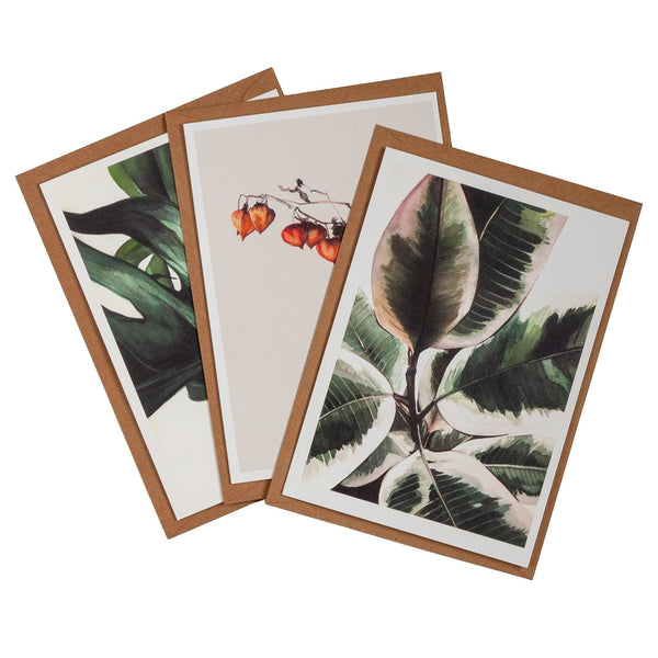 three greeting cards with botanical designs