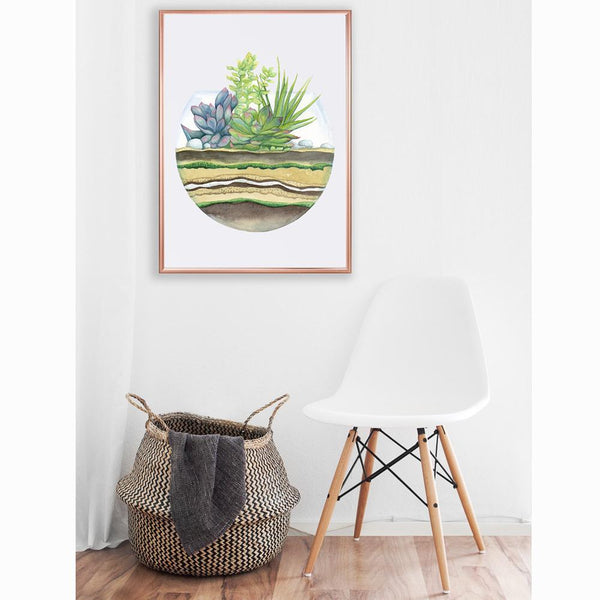 framed watercolour picture of a round terrarium with a complete profile of the plants and soil levels hanging on a white wall above a white chair and wicker laundry basket