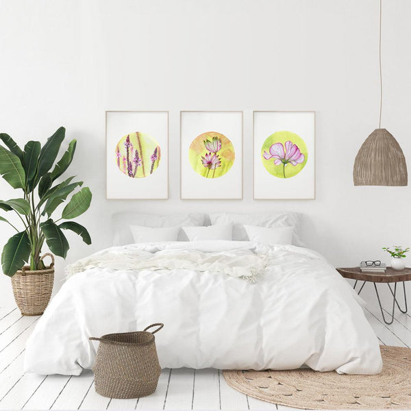three watercolour circular paints of a verbena astrantia and cosmos in pink green and yellows hanging above a bed with a big plant