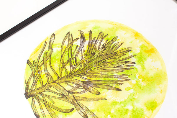 close up detail of circular yellow and green watercolour painting of a euphorbia