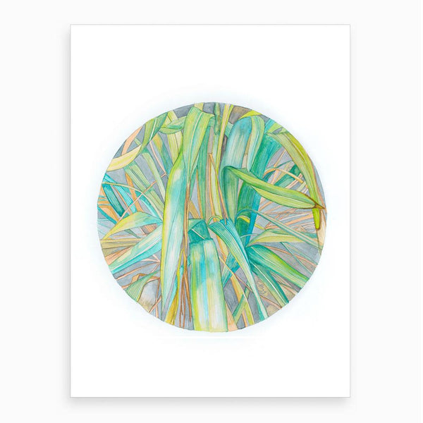circular watercolour of grass in late summer night