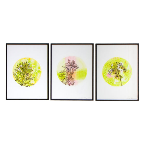 three black framed watercolour prints of flowers in pink green tones