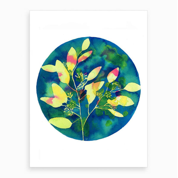 watercolour of a yellow eucalyptus plant with a blue colourful background