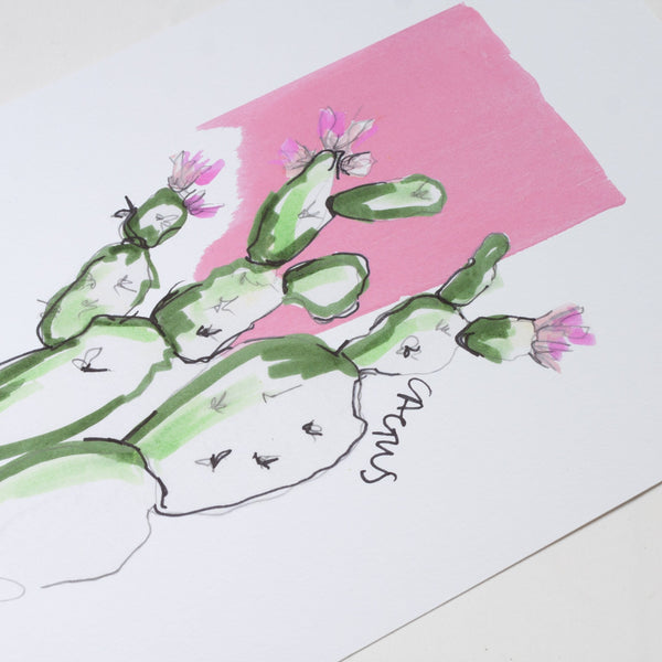green cactus on a pink background screen print
