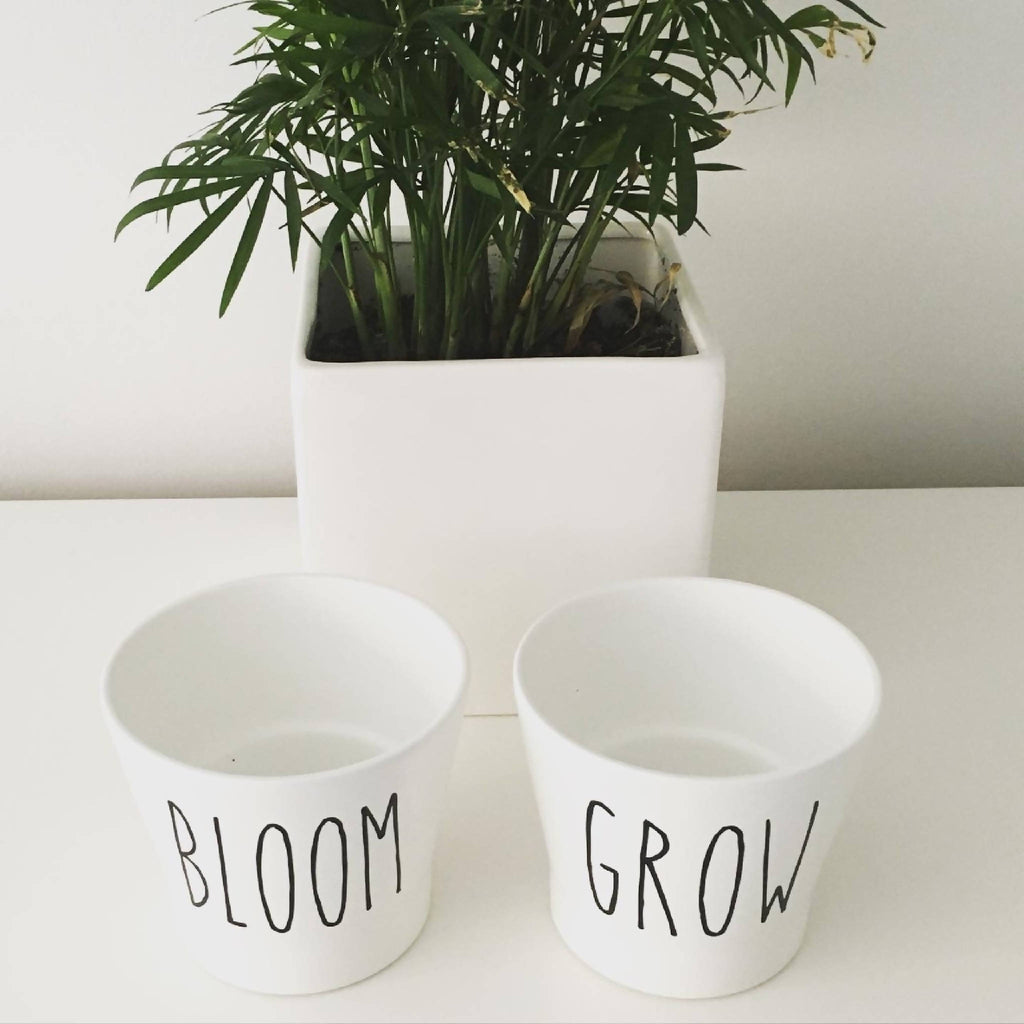 Set of Two 'Grow & Bloom' Ceramic White Plant Pots