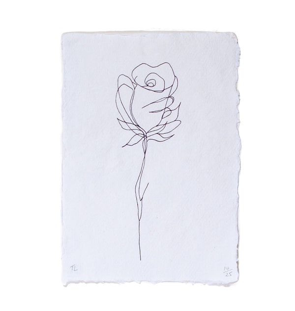 hand drawing of a rose on a white piece of paper