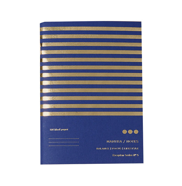 purple and gold striped notebook with the words mantra notes printed in gold